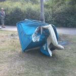 Śmierdzący problem w naszych parkach