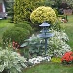 Który ogród na Zaciszu najładniejszy? Konkurs