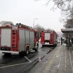 Spalił się weterynarz na Łojewskiej