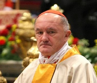 kardynal_nycz_archidiecezja