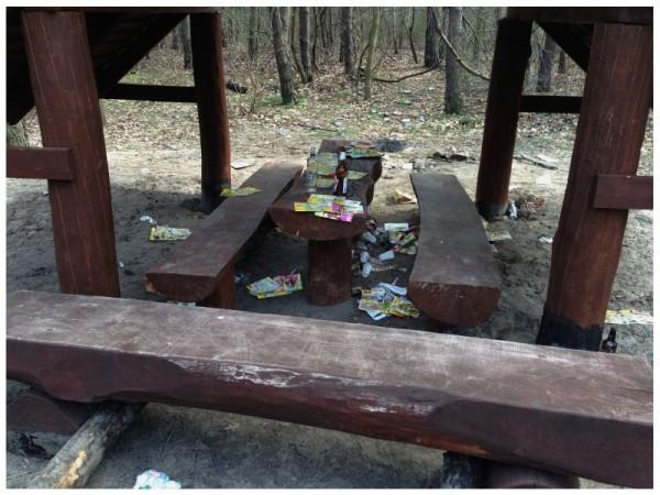 Bałagan w Lesie Bródnowskim / fot. od czytelnika
