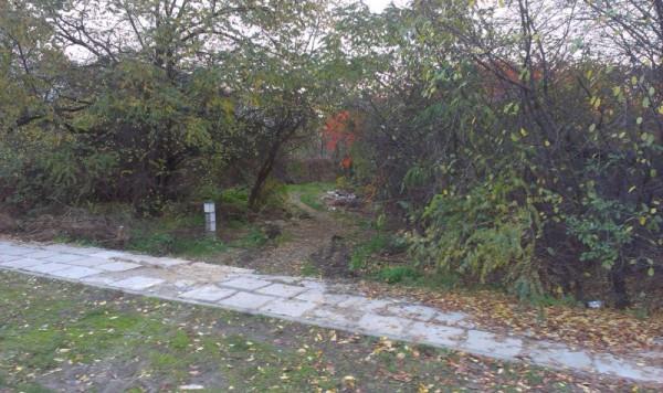 Przy samym chodniku nie ma już śmieci. Ale kawałek dalej już tak / fot. targowek.info