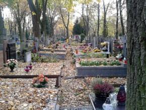 Cmentarz Bródnowski jesienią /fot. targowek.info