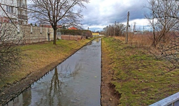 Wzdłuż kanałku w kierunku Trasy Toruńskiej dziś nie ma nawet ścieżki / fot.targowek.info