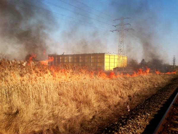 Pożar trawy przy ul. Zabranieckiej /fot. JRG 5/ Straż Pożarna