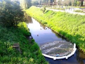 Zanieczyszczony kanałek przy ul. Rolanda / fot. targowek.info