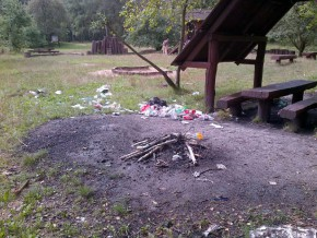 Las Bródnowski po sobotniej imprezie