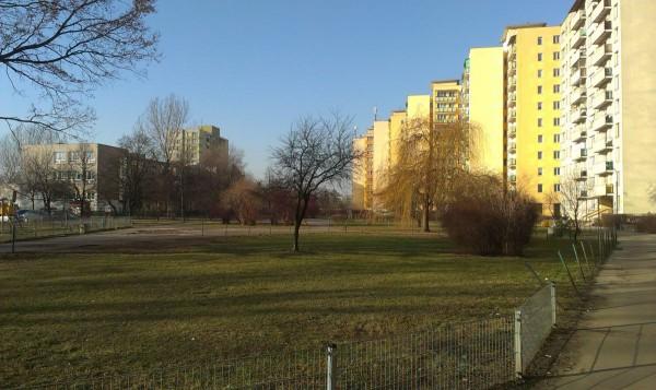 Tak wygląda podwórko przed blokami przy Rembielińskiej 15, 17 i 19. Zieleń ładna, ale... nie ma ani jednej ławki / fot. targowek.info