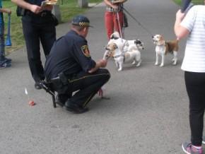 Strażnicy miejscy namawiali do sprzątania psich kup