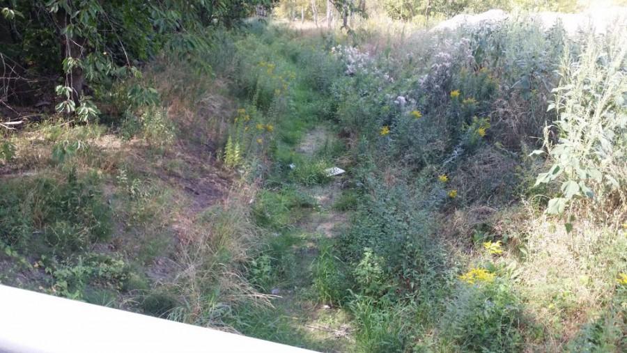 Dalej kanał jest od dość dawna wyschnięty. Dno zdążyło nawet zrosnąć trawą.
