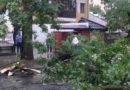 Nawałnica nad Warszawą. Zniszczenia w całej dzielnicy [ZDJĘCIA]
