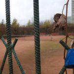 Nowy plac zabaw zamiast kortów w Parku Bródnowskim