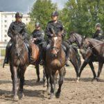 Konni policjanci wyprowadzili się z Targówka